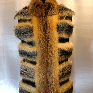 vesta dama vulpe australiana